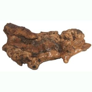 Root Burl Wood Polished Wood Heavy Natural 12""